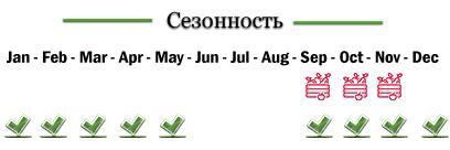 aktinidio-rus