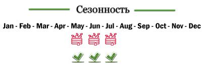 berikoko-rus
